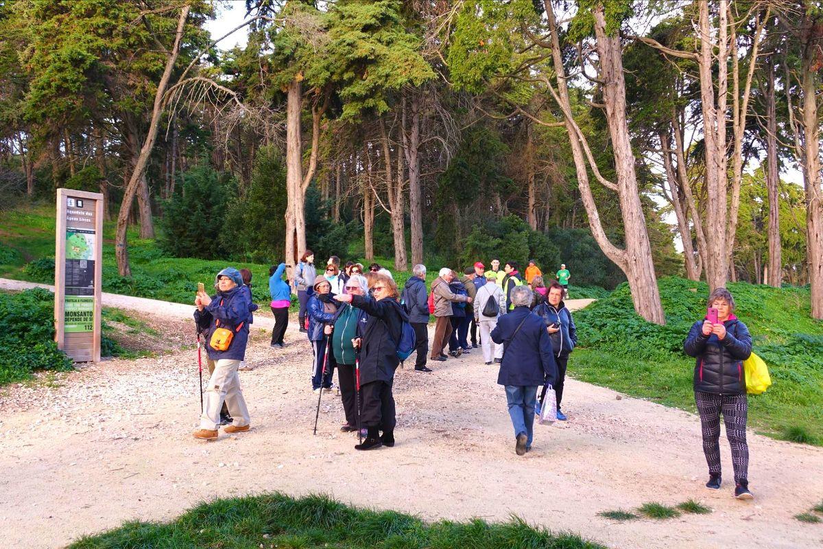 Caminhada | Parque Florestal de Monsanto