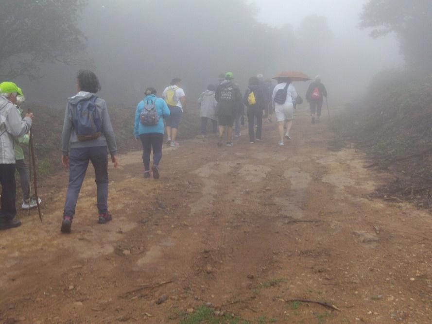 Aconteceu |Caminhada ao Santuário da Peninha