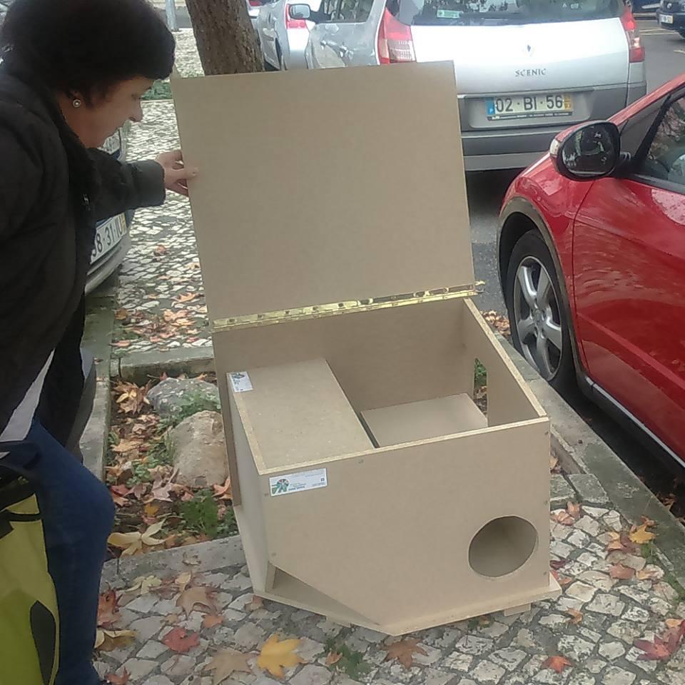 Projeto abrigo para gatos (OP2015)