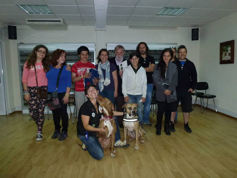 Workshop de Psicologia Canina