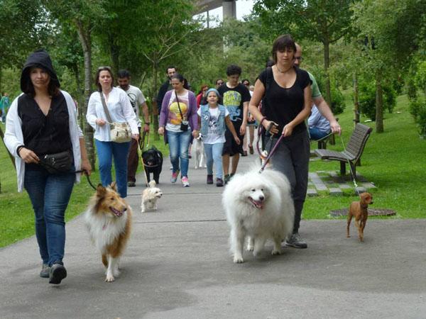 Passeio Canino