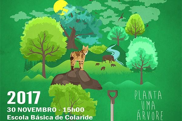 reflorestacao_nacional_2017
