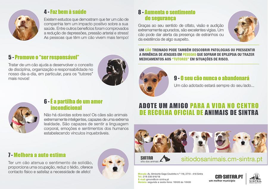 Adote uma vida | intra - Sítio dos animais