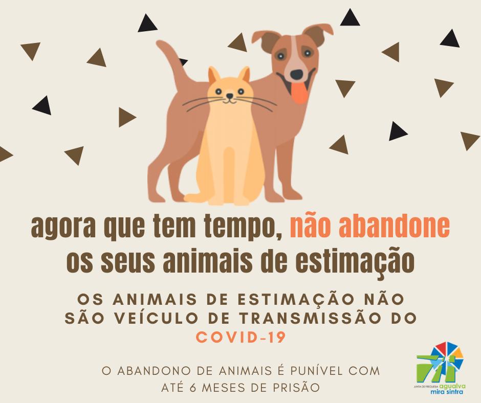 Não abandone os seus animais